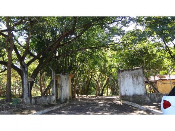 Chácara à venda com 3 dormitórios em Jardim potiguar, Varzea grande cod:15475 - Foto 4
