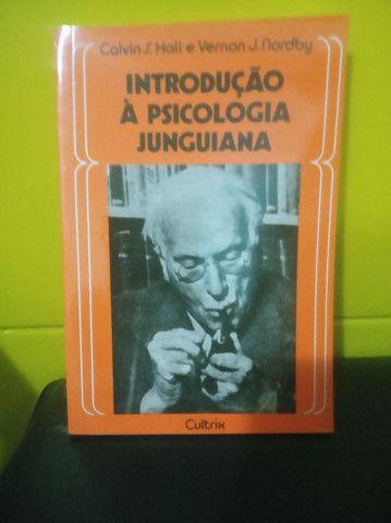 4 livros de Psicanálise  - Foto 2