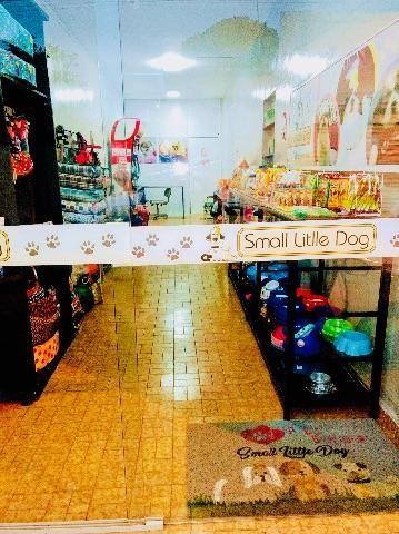 Movens de loja para pet shop com ótimo preço