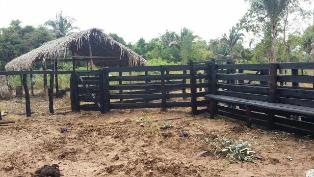 Imperdivel Fazenda em Tocantins