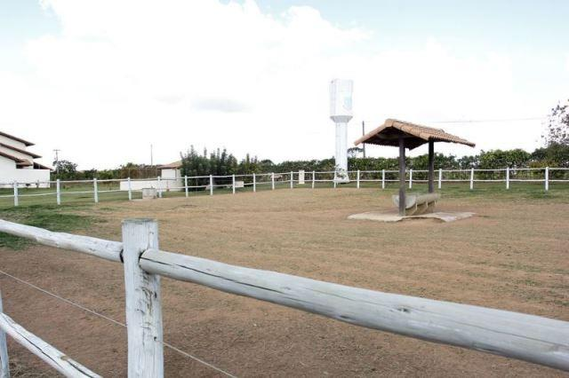 Samuel Pereira oferece: Haras com estrutura pronta, para criadores de bom gosto! - Foto 5