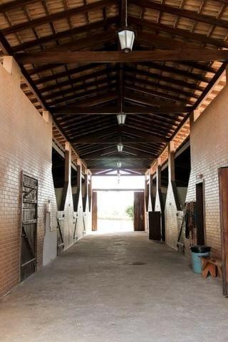Samuel Pereira oferece: Haras com estrutura pronta, para criadores de bom gosto! - Foto 2