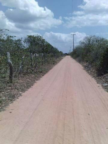 Terra no Sítio Lagoa Redonda Zona Rural de São Pedro RN What * - Foto 8