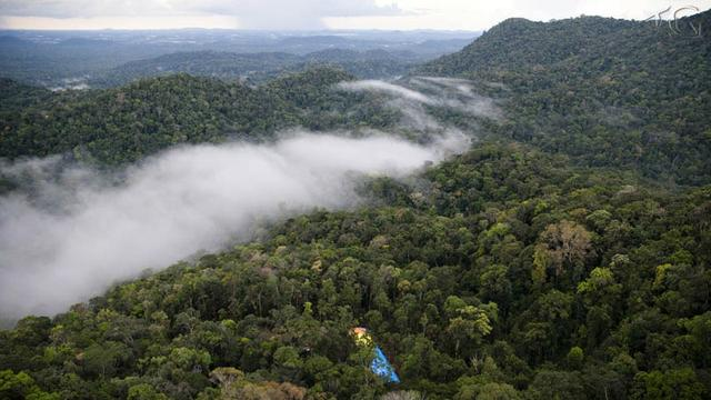 Fazenda de 11.250.000 hectares na AM 010 - Foto 7