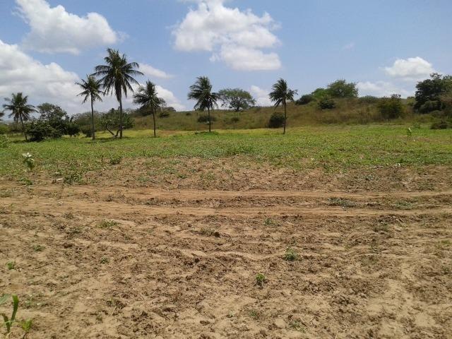 Fazenda com 62 há na br 304, com rio potengi, casa, deposito - Foto 13