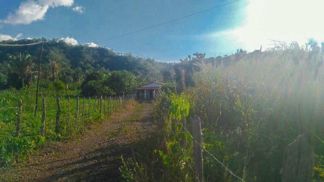 Vendo Fazenda de 122 hectares com psicultura - Foto 7