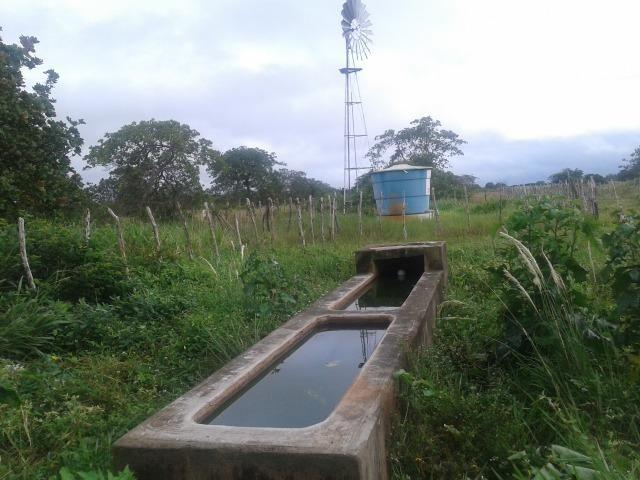 Fazenda com 110 há a 20 km de macaíba, 4 casas, 3 poços, riacho, barreiro