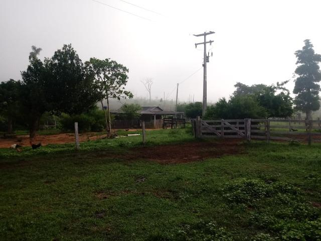 Vendo Fazenda em Novo Prigresso/PA - Foto 5
