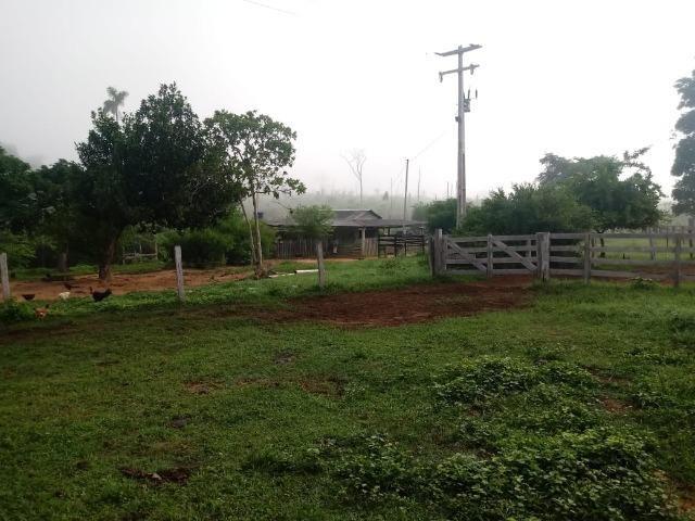 Vendo Fazenda em Novo Prigresso/PA - Foto 11