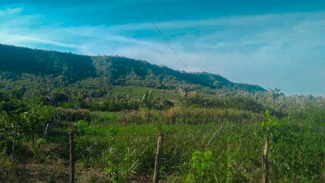 Vendo Fazenda de 122 hectares com psicultura - Foto 4