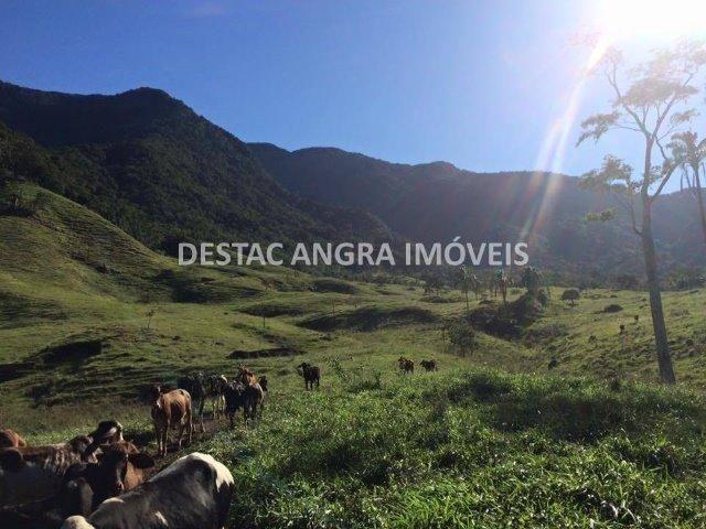 Fazenda na Serra D?água em Angra- 65 Alqueires - Foto 4