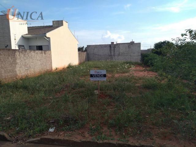 Terreno à venda, 227 m² por R$ 60.000 - Distrito Sumaré - Paranavaí/Paraná - Foto 3