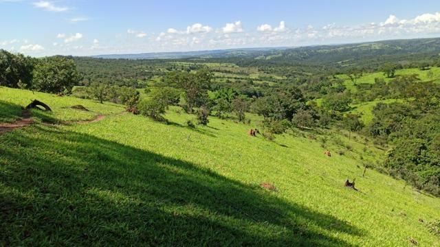 Chácara 2 Alqueires Formada 9 Km Asfalto Corumbá Goiás - Foto 10
