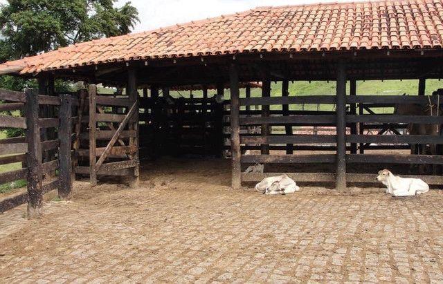 Vendo sítios e fazendas com ótimos preços - Foto 10