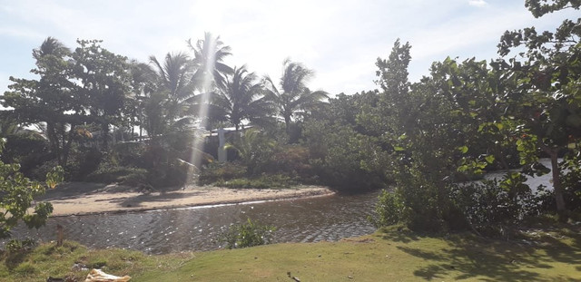 Férias no paraíso ilha de Aratuba  - Foto 13