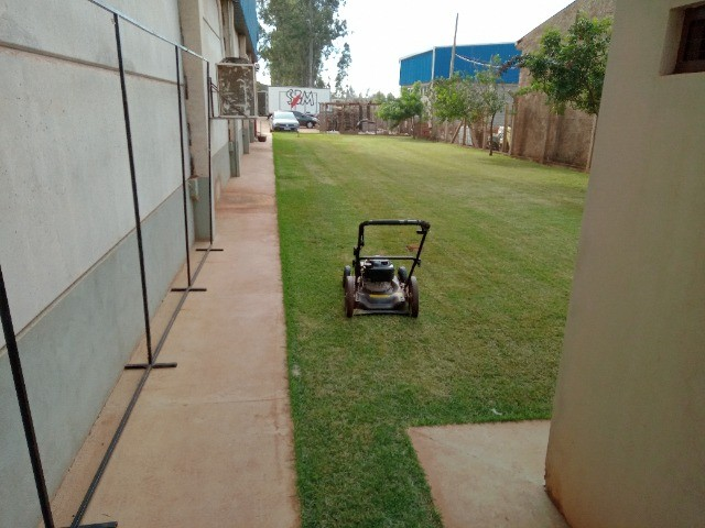 Jardinagem para casas com jardim grande - Foto 3