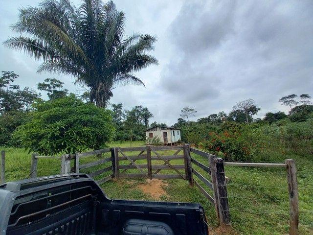 Chacara km 11  - Foto 6
