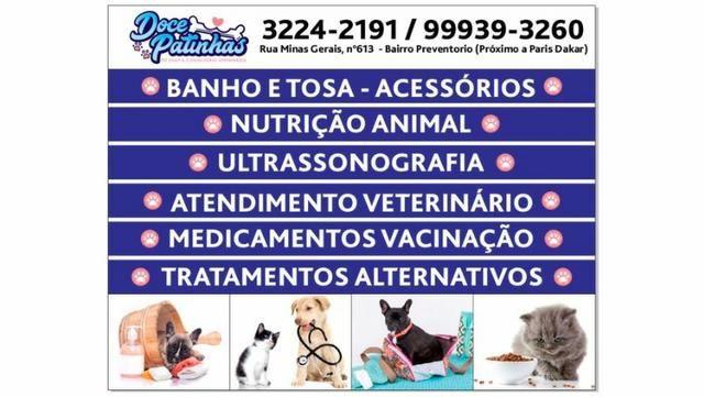 Pet shop Doce Patinhas
