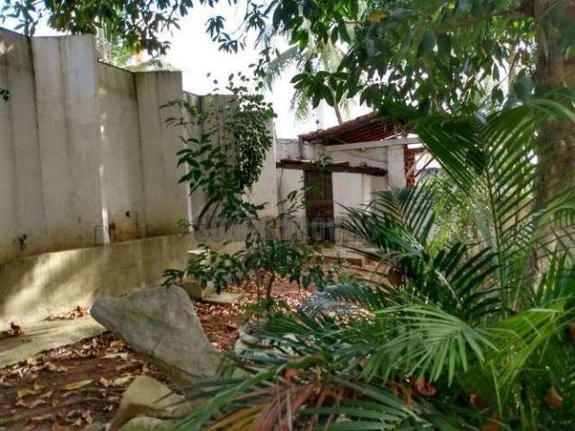 Sítio com 1.600 m2 total com árvores frutíferas - Foto 8