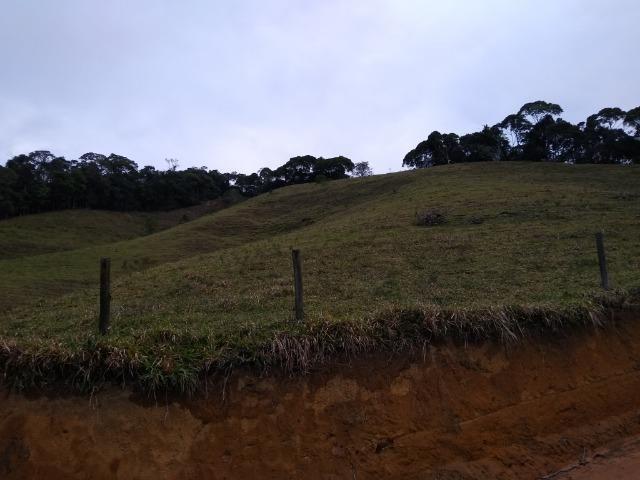 Fazenda Viana 20 alqueires - Foto 10