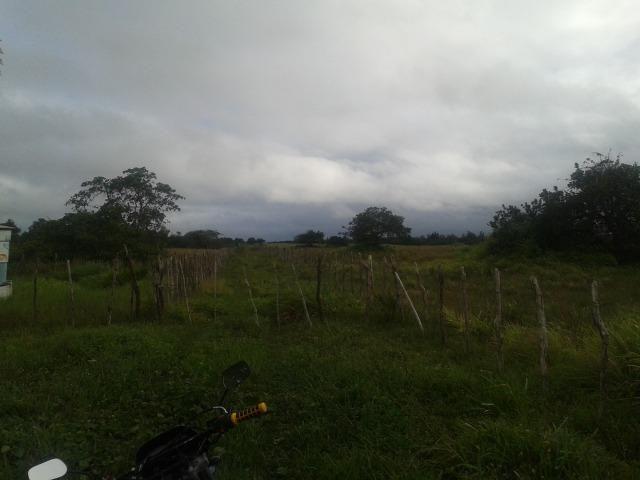 Fazenda com 110 há a 20 km de macaíba, 4 casas, 3 poços, riacho, barreiro - Foto 18