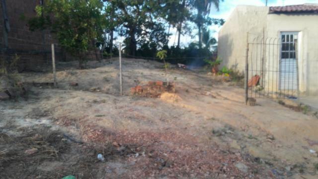 Terreno na entrada de Tamandaré PE - Foto 4