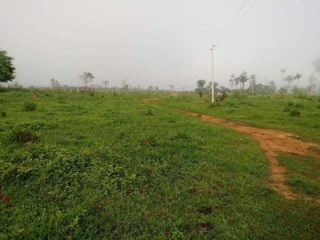 Vendo Fazenda em Novo Prigresso/PA - Foto 3
