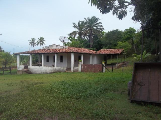 Fazenda com 110 há a 20 km de macaíba, 4 casas, 3 poços, riacho, barreiro - Foto 13