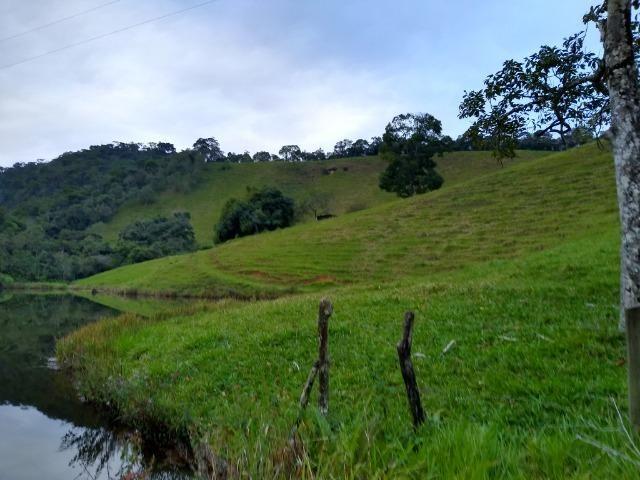 Fazenda Viana 20 alqueires - Foto 7