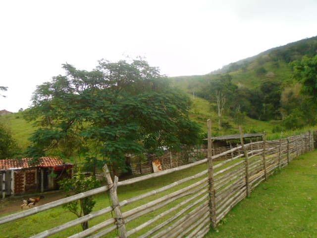 Código 8 - Sítio no bairro do Caju - Maricá com 9800m2 - Foto 2