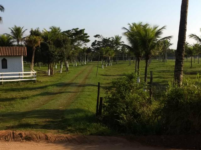 MhCód: 144 Terrenos Próximo ao Trevo de Búzios - Foto 2