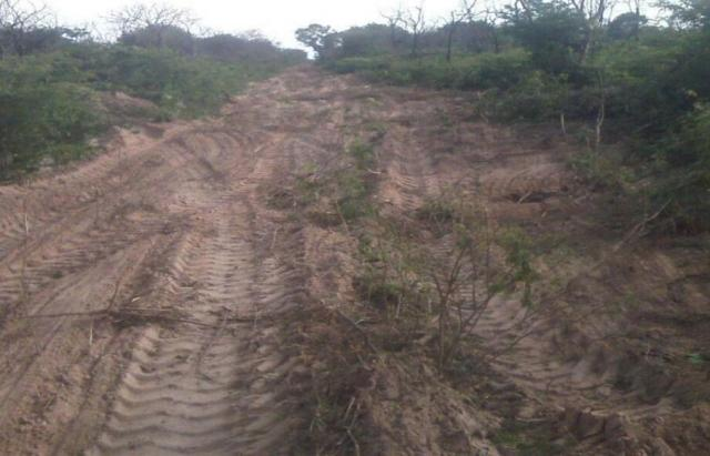 Fazenda à venda, * m² por R$ 12.500.000,00 - Zona Rural - Pilão Arcado/BA - Foto 8