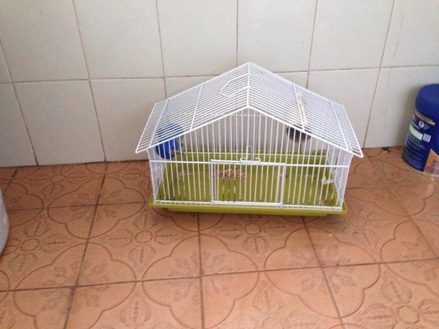 Gaiola de Hamster + ração