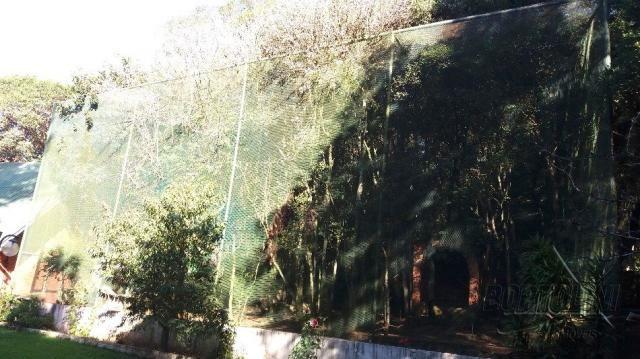 Chácara à venda em Sitio nono zonta, Passo fundo cod:8465 - Foto 12