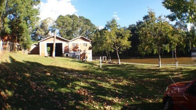 Chácara à venda em Sitio nono zonta, Passo fundo cod:8465 - Foto 8