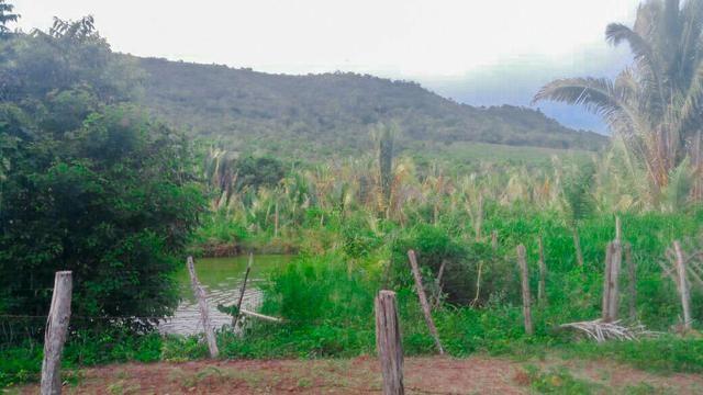 Vendo Fazenda de 122 hectares com psicultura - Foto 9