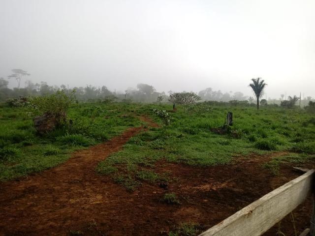Vendo Fazenda em Novo Prigresso/PA