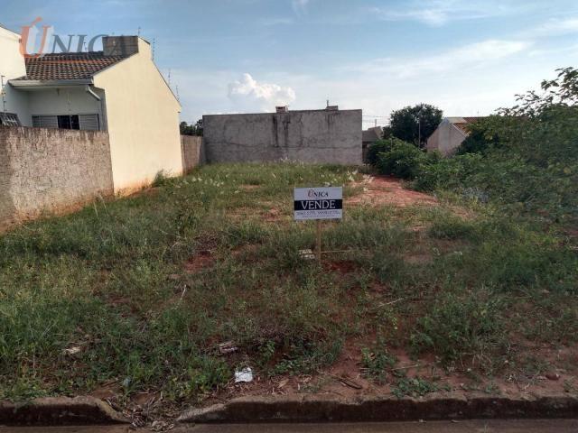 Terreno à venda, 227 m² por R$ 60.000 - Distrito Sumaré - Paranavaí/Paraná