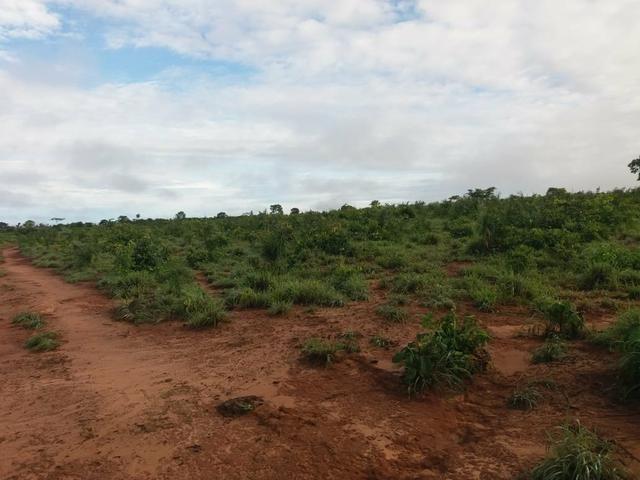 Fazenda em Grajaú, oportunidade
