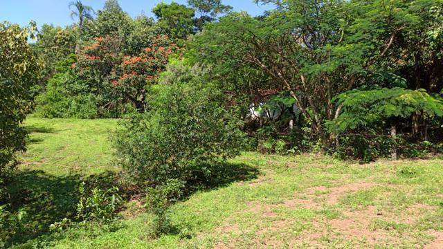 Chácara 2 Alqueires Formada 9 Km Asfalto Corumbá Goiás - Foto 6