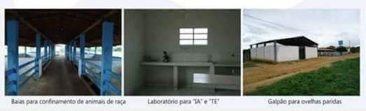 Fazenda à venda, 18400000 m² por R$ 8.000.000,00 - Zona Rural - Pilão Arcado/BA - Foto 13