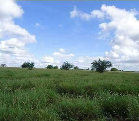 Fazenda à venda, 18400000 m² por R$ 8.000.000,00 - Zona Rural - Pilão Arcado/BA
