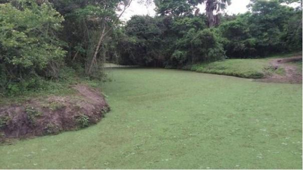 Fazenda à venda, 12620000 m² por R$ 22.000.000,00 - Aeroporto - Feira de Santana/BA - Foto 15