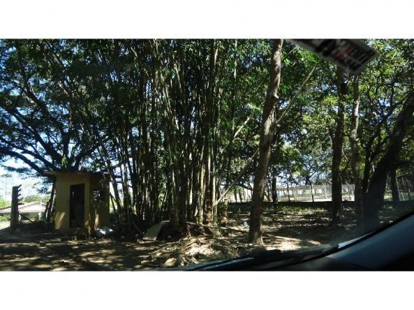 Chácara à venda com 3 dormitórios em Jardim potiguar, Varzea grande cod:15475 - Foto 5