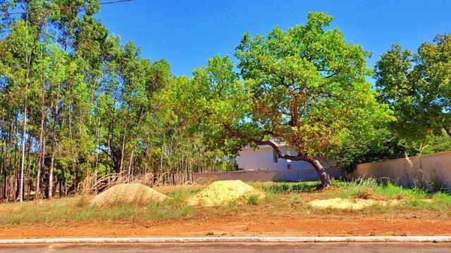 Lote de 1.200 m², murado e nascente no Condomínio Polinésia - Foto 14