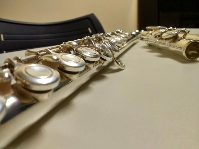 Aulas de flauta transversal 35 reais hora aula