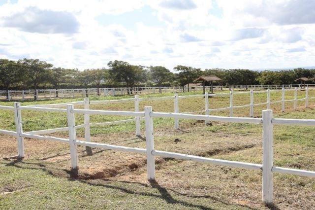 Samuel Pereira oferece: Haras com estrutura pronta, para criadores de bom gosto! - Foto 3
