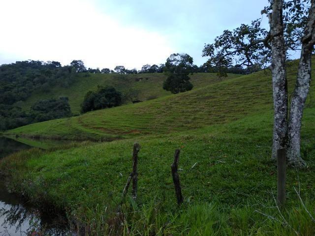 Fazenda Viana 20 alqueires - Foto 15