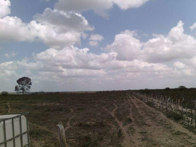 Terra no Sítio Lagoa Redonda Zona Rural de São Pedro RN What * - Foto 2