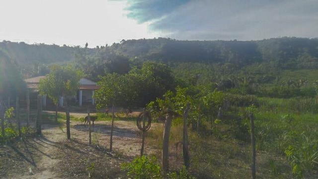 Vendo Fazenda de 122 hectares com psicultura - Foto 2